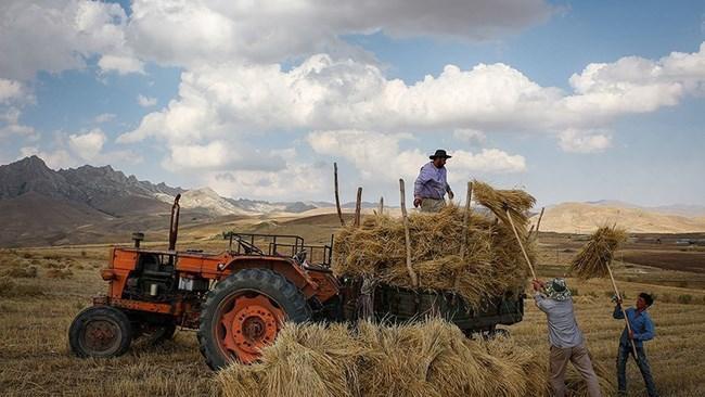 جهش تولید در بخش کشاورزی با حذف بروکراسی اداری